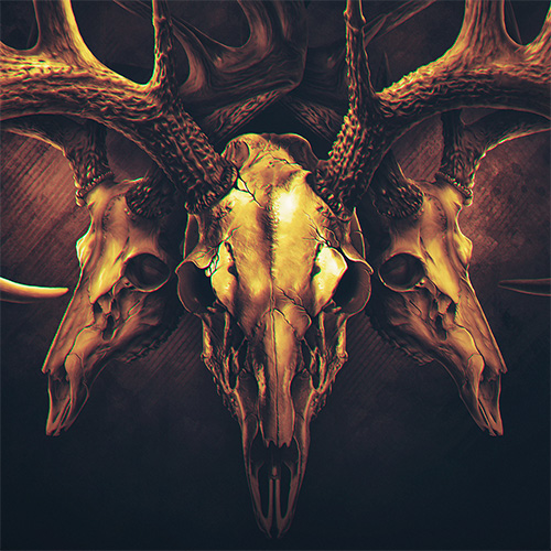 A design for a t-shirt, shown with two realistic illustrations of deer skulls.