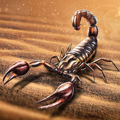 Illustration of a Scorpion in the desert sun.