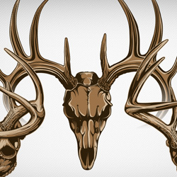 Whitetail Deer skull vectors.